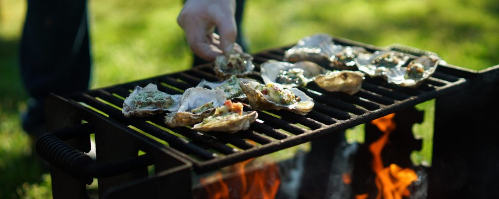 Wescott Bay oysters