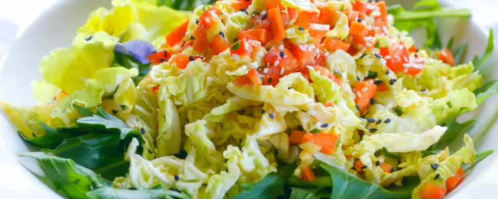 Asian Coleslaw with red peppers, ginger, and sesame seeds