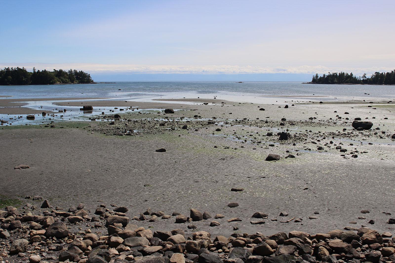 false bay tide out