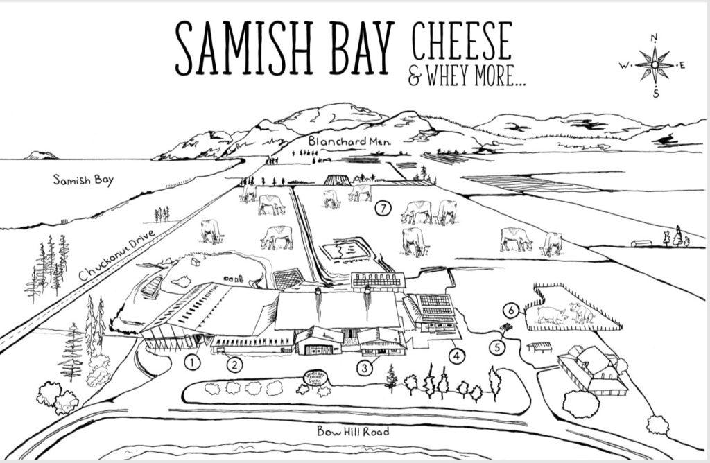 Skagit Valley's Samish Bay Cheese