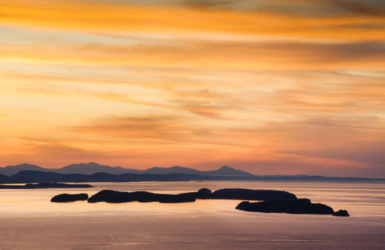 Sunsets, whale watching, and more - enjoy the best things to do in the San Juan Islands This Summer