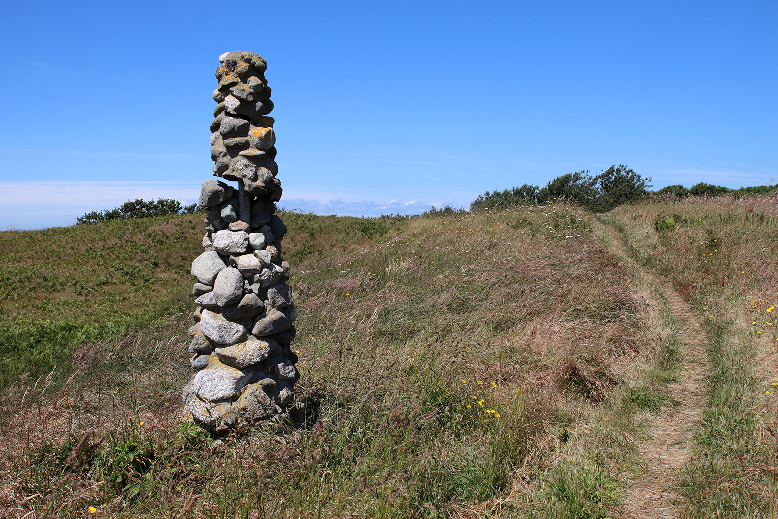 American Camp path