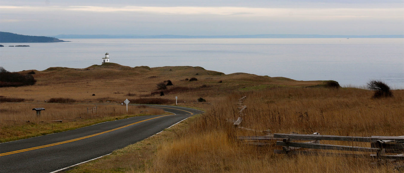 cattle point road